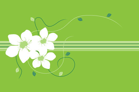 Beautiful  flowers on green background (illustration) Vector