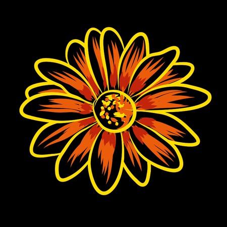 Beautiful   flowers on black background (illustration) Stock Vector - 7793004