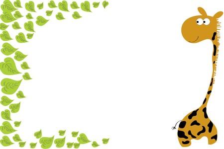 giraffa camelopardalis: funny tall giraffe and mane green foliage