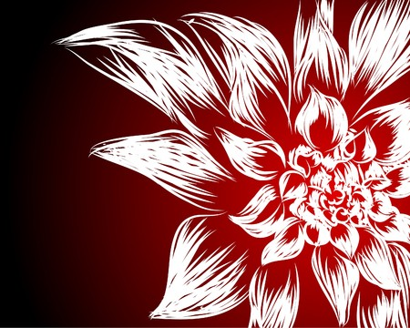 pinstripes: Beautiful   flowers on black-red background (illustration) Illustration