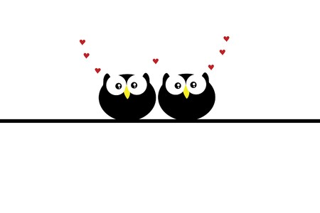 bird watching: beautiful funny love owl on white background