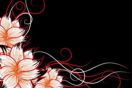 Beautiful   flowers on black background (illustration) Stock Vector - 7926057