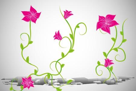 white background illustration: Beautiful  flowers on white background (illustration) Illustration
