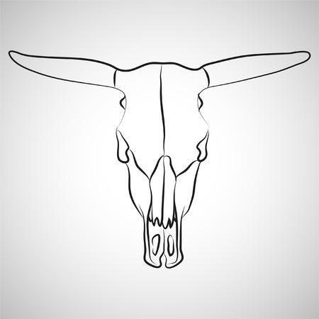 craneo de vaca: cr�neo de vaca sobre fondo gris (ilustraci�n)
