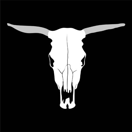 bull's eye: cow skull on black background (illustration)