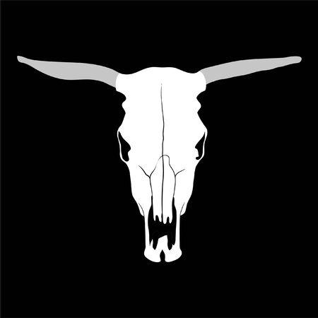 craneo de vaca: cr�neo de vaca sobre fondo negro (ilustraci�n)