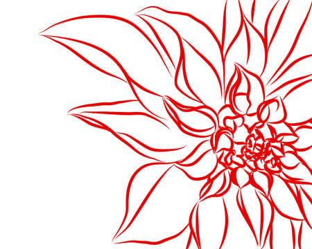 Beautifull flowers on white background (illustration) Stock Vector - 8301783