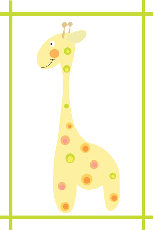 camelopardalis: Cute giraffe in frame on white background