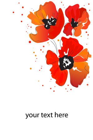 beautiful bright red watercolor blossom paint poppy Illustration