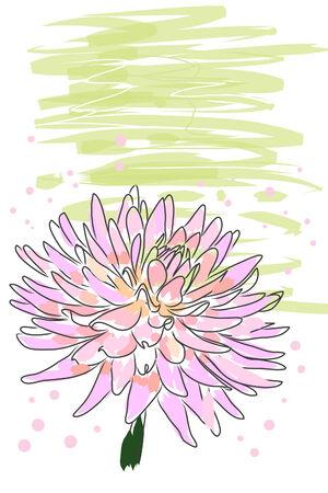 beautiful blossom pink watercolor dahlia and splash