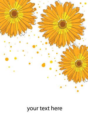 beautiful blossom watercolor orange calendula on white background Stock Vector - 8302325