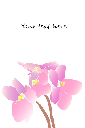 beautiful pink watercolor violet on white background Stock Vector - 8302147