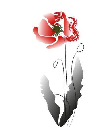red poppy Stock Vector - 8815460
