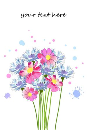 bouquet of cornflower and pink flowers Vector