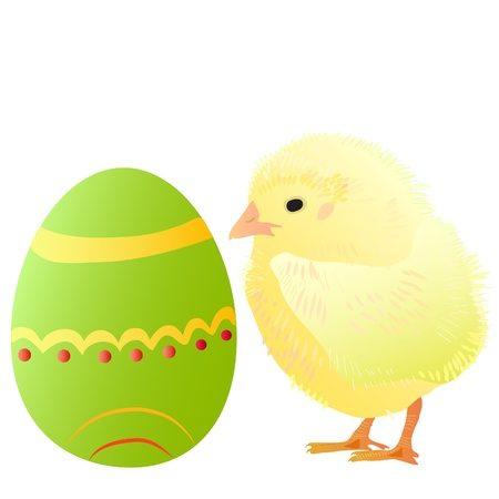one small fluffy yellow chick and easter egg Stock Vector - 9242439