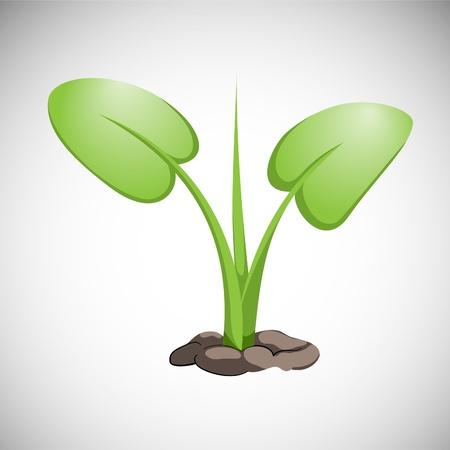 green Grass on white background (illustration) Stock Vector - 9304698