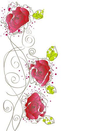 orange rose: red roses