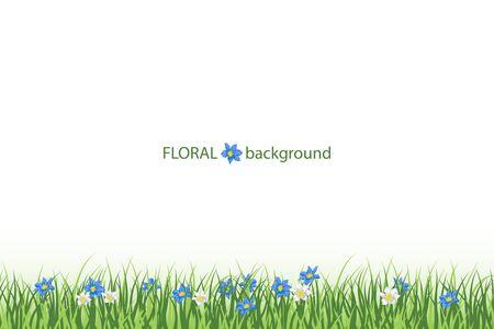 Beautifull fresh green grass on white background