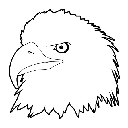outline drawn eagle head on white background Vector