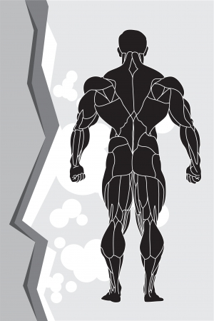 arm muscles: a strong man silhouette Illustration