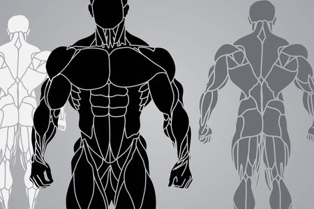 triceps: a strong man silhouette Illustration