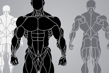 trizeps: eine starke Mann silhouette