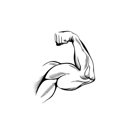 muscle arm: Arm muscles (sketch mans hand on white)