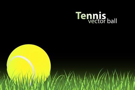 tennis racquet: tennis ball on grass (vector illustration)