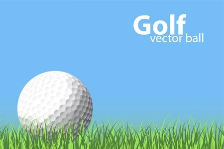 pelota de golf: Ilustraci�n de una pelota de golf en el c�sped