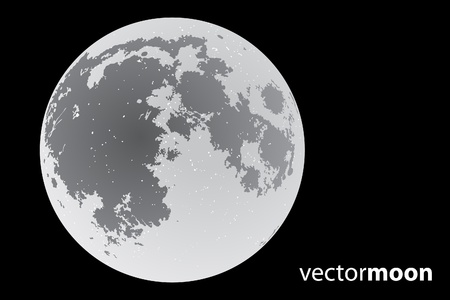 beautiful vector moon on black background Stock Vector - 9931214