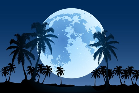 beautiful landscape (palm trees in the moonlight) Stock Vector - 9931219