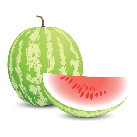 Vector illustration of a ripe watermelon