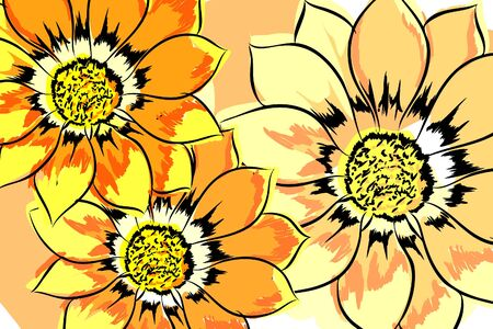 big daisy: Beautiful vector flowers on white background
