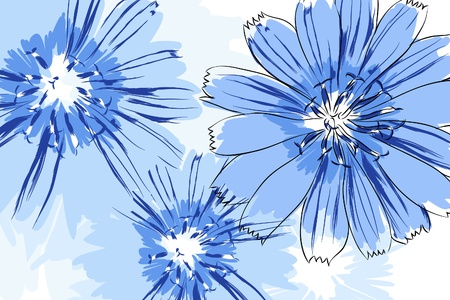 flowers close up: Beautiful vector flowers on white background