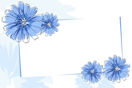 close up: Beautiful vector flowers on white background
