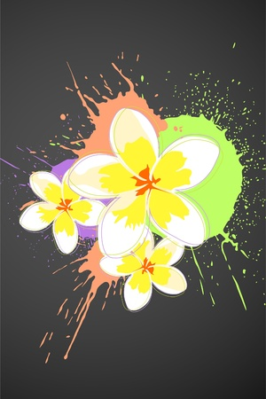 big daisy: Beautiful bright colorful flowers (vector illustration)