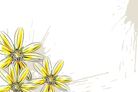 big daisy: Beautiful floral vector illustration on white background Illustration