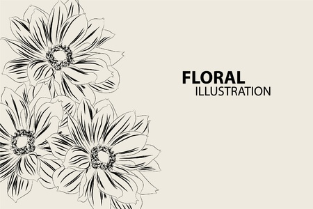 big daisy: Beautiful floral vector illustration on gray background Illustration