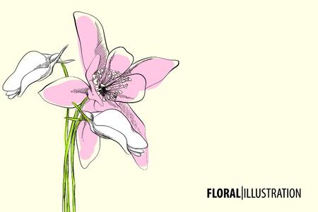 Beautiful floral vector illustration on light background Vektoros illusztráció