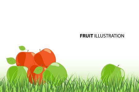 apple leaf: Vector illustration (close up ripe apples)