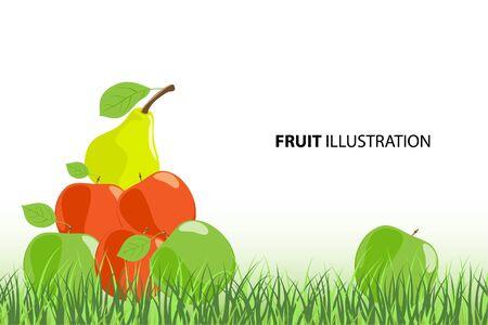 vector illustration of ripe fruits (orange, apples)