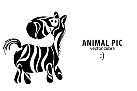 zebra: Animal illustration of hand drawn zebra