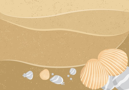 Background (some seashells on sand) Vector