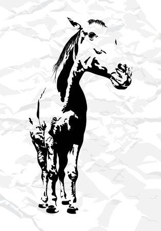 Vector Horse Stock Vector - 14948090
