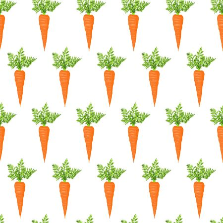 Fresh carrot Stock Vector - 15480000