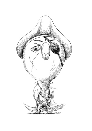 sea robber: Pirate chick in sketch style Illustration