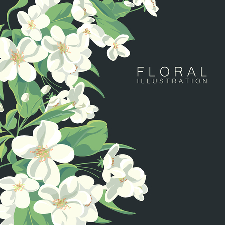 appletree: floral illustration of apple tree blossom