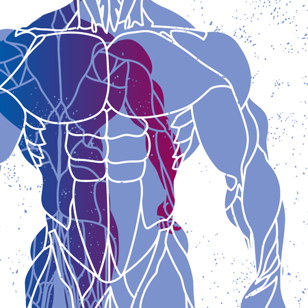sportsmen: Fitness background of silhouette of a mans torso Illustration