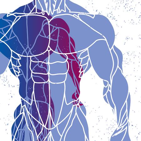 cuerpo hombre: fondo de la aptitud de la silueta de un torso Mans