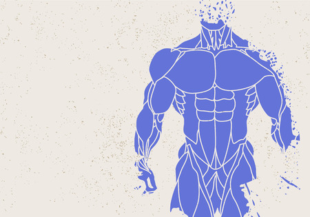 torso: Fitness background of silhouette of a mans torso Illustration